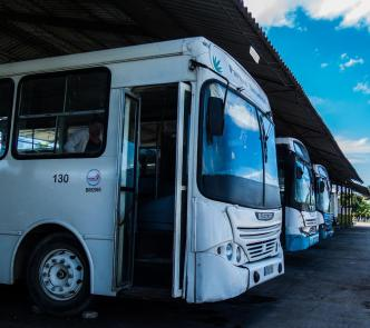 Buses in Cuba. Photo: Iris Mariño